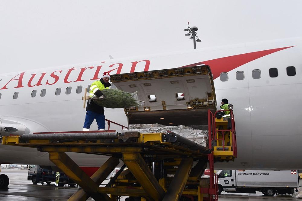 Austrian Airlines fliegt Nordmanntannen auf die Malediven