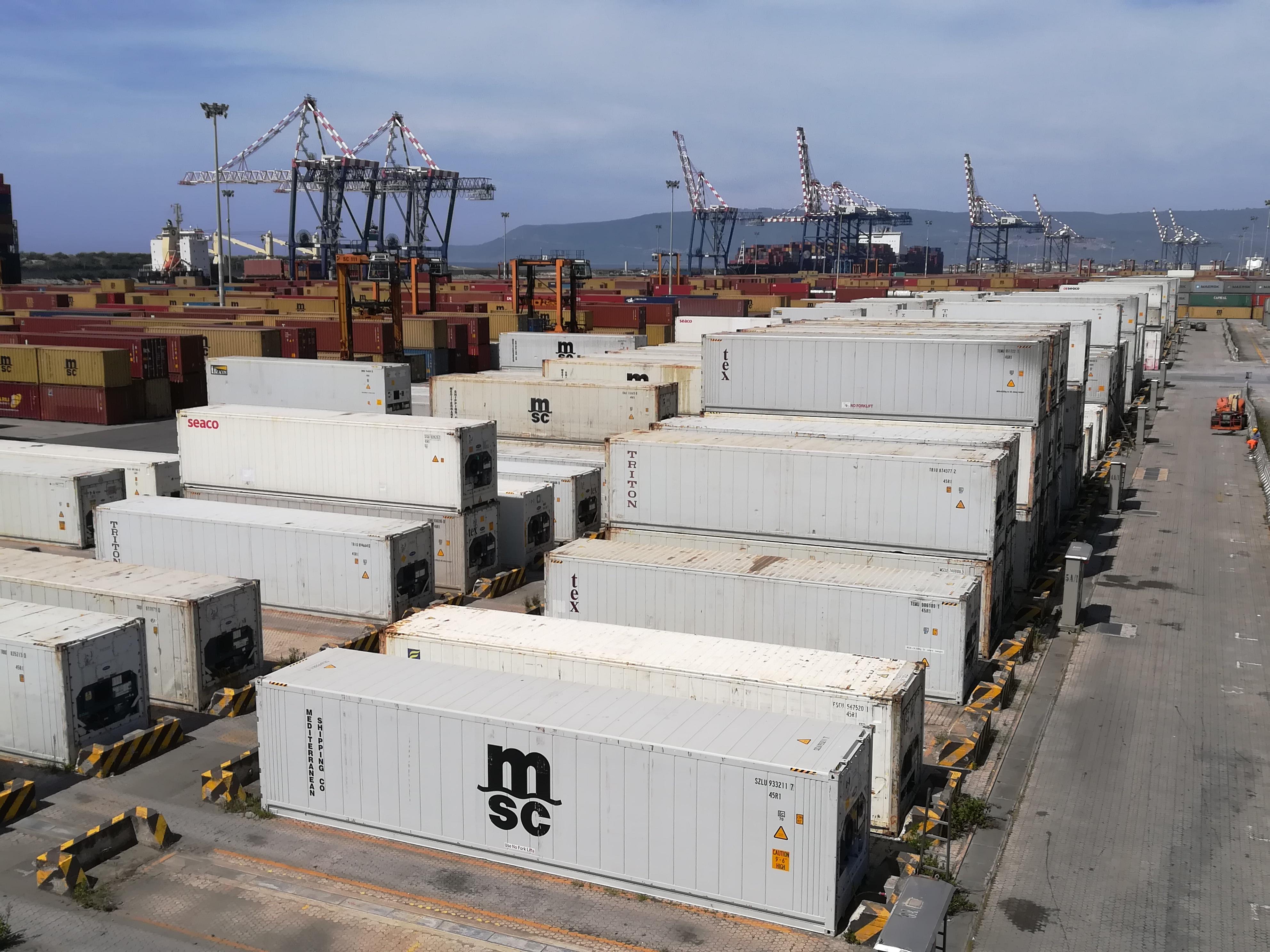 MSC investiert weiter in Reefer Cargo Services