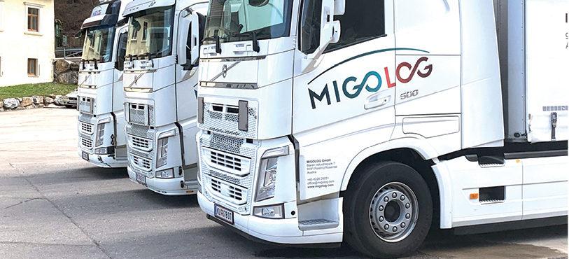 Migolog überzeugt mit Teamarbeit und individuellen Kundenlösungen