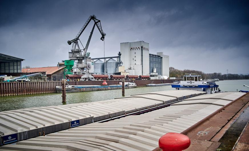 So viele Schiffe wie nie zuvor im Hafen Straubing-Sand